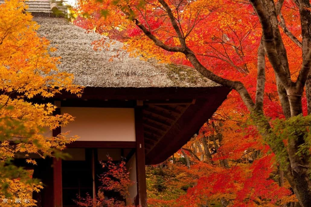 Thatched roof in Kyoto