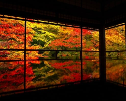 Ruriko-in Temple's autumn leaves, Kyoto
